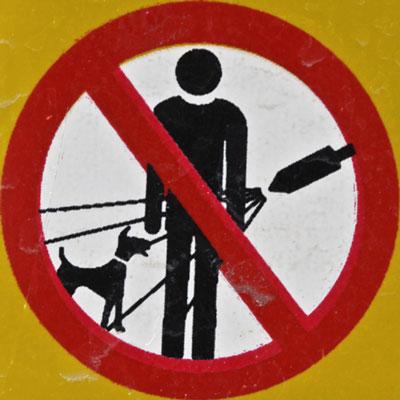 Warning Dog Shower